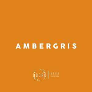 Ambergris fragrance